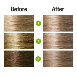Naturigin Light Ash Blonde 8.1